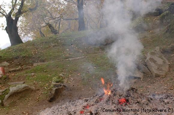 bruciatura di foglie e ricci. Foto Comunità Montana. Autore Rovere C.