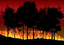 Dichiarazione stato di massima pericolosità per gli incendi boschivi dal giorno 8 Aprile 2020